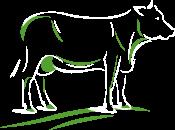 L'élevage